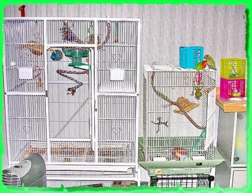 сделать клетку для попугая своими руками угловую фото