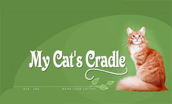 Мейн-кун: О породе - Породы кошек - CATS.